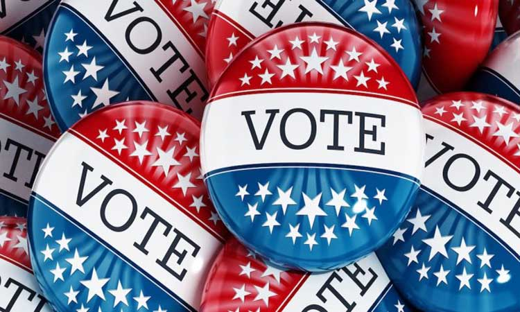 """Pins that say have white stars on red in the top third, the word """"Vote"""" in white in the middle, and white stars on blue in the bottom third."""